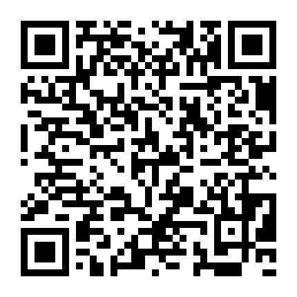www.vns13199.com